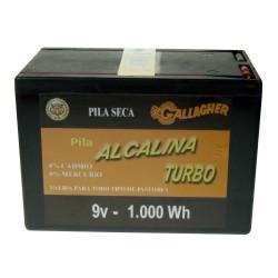 Pila alcalina 9 V 120 Ah...