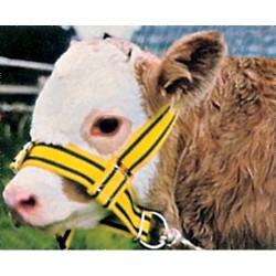 Cabezada vacas nailon y...