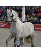 Productos para equipar el caballo y realizar equitación