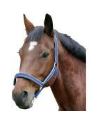 Cabezadas de cuadra para caballos
