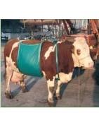 Productos para el cuidado de las vacas