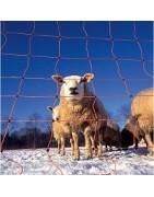 Malla electrificada para cerras ovejas y cabras