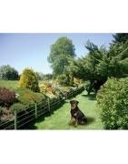 Pastores eléctricos de jardín para perros